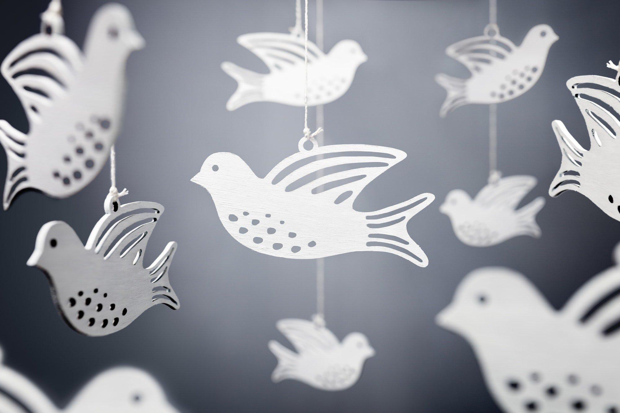 White dove symbol of peace